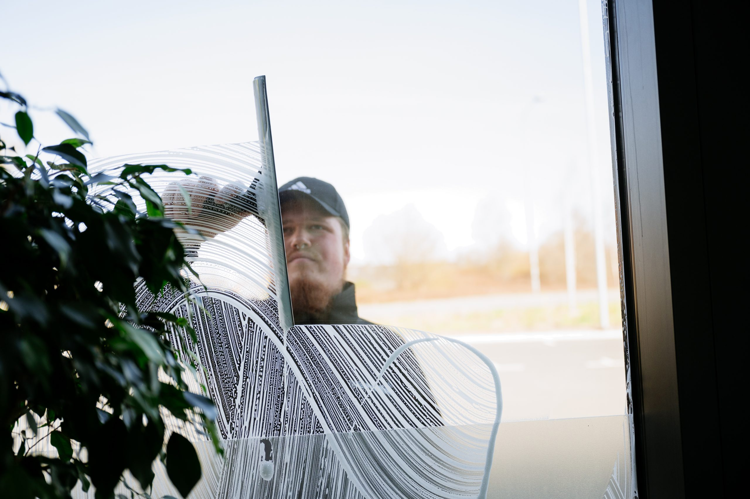Proffsig fönsterputs - Städproffsen